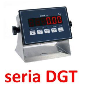 Terminale DGT